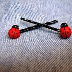 Ladybug Bobby Pins-set of 2