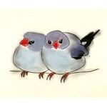 Blue Bird Art - Two Friends - 29.7cm X 21cm print
