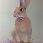 "Bunny, Rabbit, PRINT, Watercolour Painting -  8""x10"" Wall art, Home Decor"