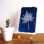 Cyanotype Print - Original Nature Art, 4x6 Cyan Blue - Big Leaf