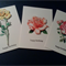 Boxed Set Beautiful Handmade Australian Floral Gift Cards & Pen