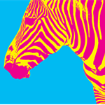 8 x 10 print Zebra pop art