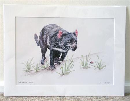 """Tasmanian Devil 12""""x 8"""" Print Australian wildlife wall art with matt frame board"""