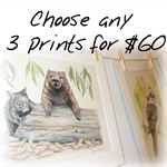 "Choose 3 Wildlife Art Prints 12""x 8"" Australian birds and animals"