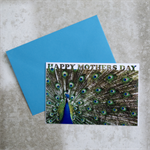 Peacock Mother's Day Card