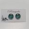 Turquoise Zebra Design Stud Earrings