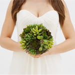 Kiwi Kiss Brides Bouquet