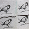 Handmade recycled paper....bird