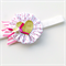 Ruffle Bloom Headband - Love Heart - Pink & Gold - Glitter Band