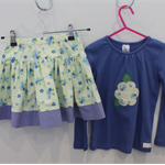 Girls Skirt and Top Set - Size 4