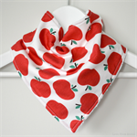 BUY 3 GET 4th FREE Bandana Dribble Bib