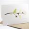 Birthday Card - Female - Green Silhouette Bird on Branch Brown - HBF073