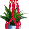Fire engine Red mini macrame hanger