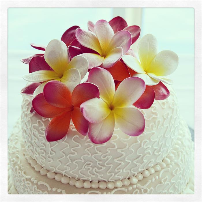frangipani wedding cake toppers diy frangipani flowers cake toppers flowers by the vase 14446