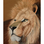 "Lion, PRINT, Pastel painting, 10x8"" Wall art, Home Decor, Lion Painting"