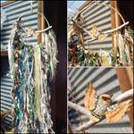 Ocean Owl Bird Dream Catcher Driftwood Beach House Warming Ribbon Coastal Decor