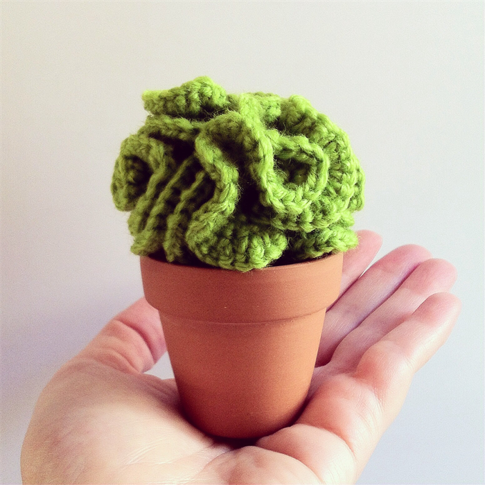Crochet Lettuce Cactus Ditto Crafts Madeit Com Au