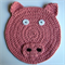 Child's Pig washcloth or placemat