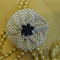 Hair Domayne White Hairclip with Blue Spots Design and Pearls in Centre