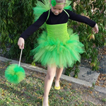 Tinkerbell inspired TuTu Dress set