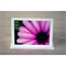 Purple Daisy Make Today Happy greeting card & envelope