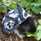 Halloween cape and hat for your guinea pig ,rat ,mouse, chinchilla or small pet