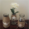 Set of 3 Milk Bottle Vases