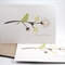 Birthday Card Pack - Green Silhouette Bird on Branch - Set of 3 - HC3_011 Female