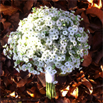 Baby's Breath Bride Bouquet