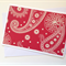 Hippy Paisley   Blank  card