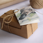 Gift Cards Mini size - ANIMALS - Gift Boxed set of 12 - Australian wildlife
