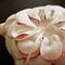 Fleur - Wedding Ring Pillow