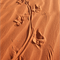 G3: Perenties Footsteps by Malcolm Ludgate ACS UN FRAMED
