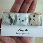 Square Glass Magnet Set - Cute Cats