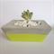 Concrete/Cement Plant Pot Handmade Homewares Decor Lime