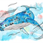 Whale Humpback blue watercolour and ink pen illustration art print