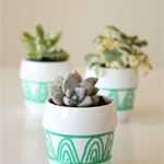 Small Succulent Planters Set of 3 hand painted, porcelain planters with green pa