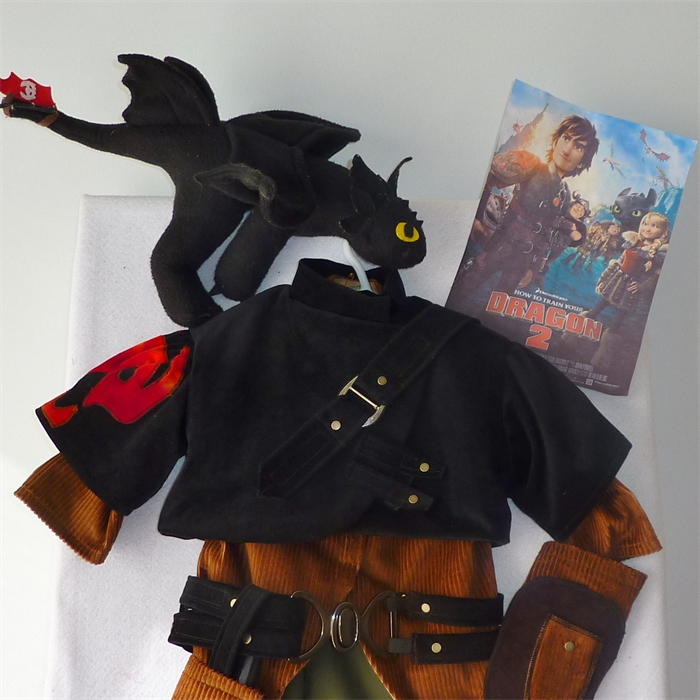 Hiccup Httyd2 Dragon Rider 6 Piece Costume Size 10 12 Custom Order Only Twinsfromoz On Madeit