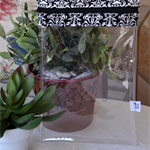 See-Through PVC Zippered