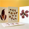 Flower Press Card Pack - Set of Four Handmade Pressed Flower Nature Cards.