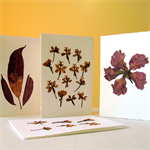 Flower Press Card Pack - Set of Four Handmade Dried Flower Nature Cards.