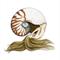 Nautilus Shell Mermaid 8x10 Print