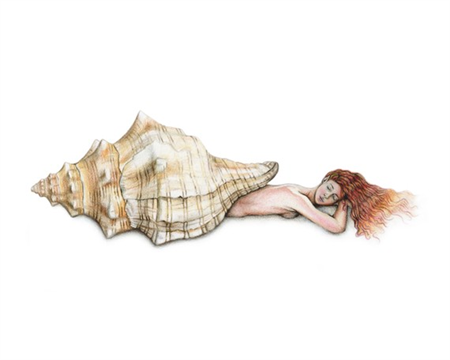 Triton Shell Mermaid Art Print Colour Pencil Drawing 8x10