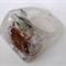 Shabby real Ranunculus flower clear resin bubble RING SZ M