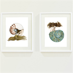 Set of 2 Nautilus & Jade Turbo Shell Mermaid Art Prints 8x10