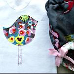 birdies & butterflies   baby girl bloomer singlet set