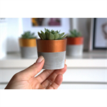 Mini concrete planter set of 3