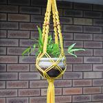 Retro Macrame Plant Hanger