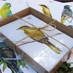 Gift box of 8 greeting cards - Endangered Australian wildlife art - Set C Birds