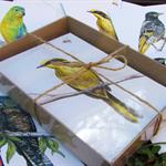 Gift box of 8 greeting cards - Endangered Australian wildlife art - Set C Birds